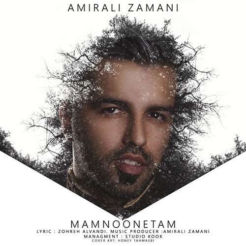 http://dl.rasanejavan.ir/RadioJavan%201395/Bahman%2095/16/Amirali-Zamani-Mamnonetam.jpg